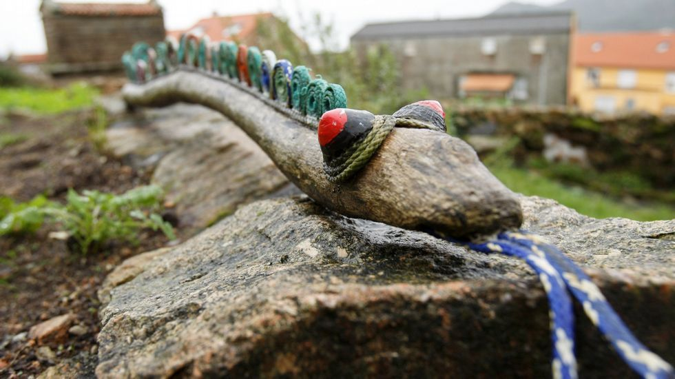 Serpiente marina. Fotografía: José Manuel Casals.